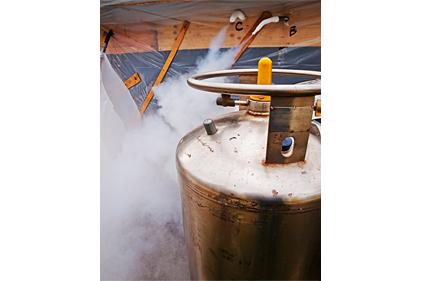 Liquid Nitrogen Reaction Cooling 2012 10 01 Process