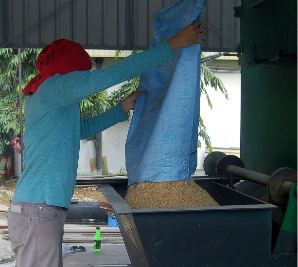 Feeding Rice Husks into the Biomass Boiler